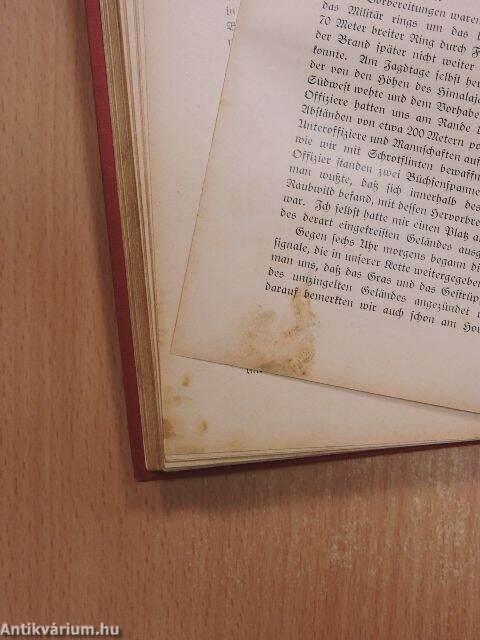 fritz levon bibliothek der unterhaltung und des wissens 1913 11 g tbet s union deutsche. Black Bedroom Furniture Sets. Home Design Ideas