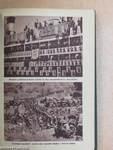 A Pesti Hirlap naptára 1937
