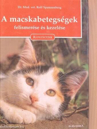 A macskabetegségek felismerése és kezelése